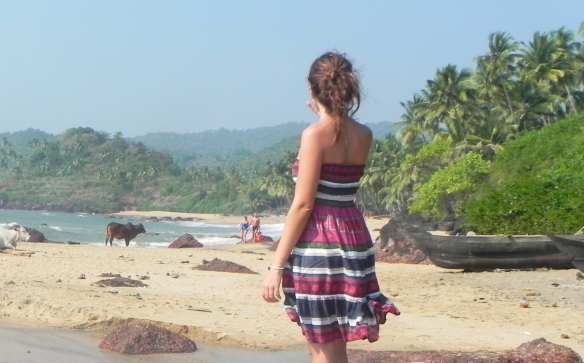 Cola Beach, Goa, India, Summer, Vacation, Travel, Animal, Nature, letting go