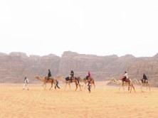 Wadi Rum WadiRum Jordan VisitJordan Camels Sand Bedouin Tea Camp Hike Mountain Blog TravelBlog