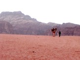Wadi Rum WadiRum Jordan VisitJordan Camels Sand Bedouin Tea Camp Hike Mountain Blog TravelBlog Sand Feet Camel