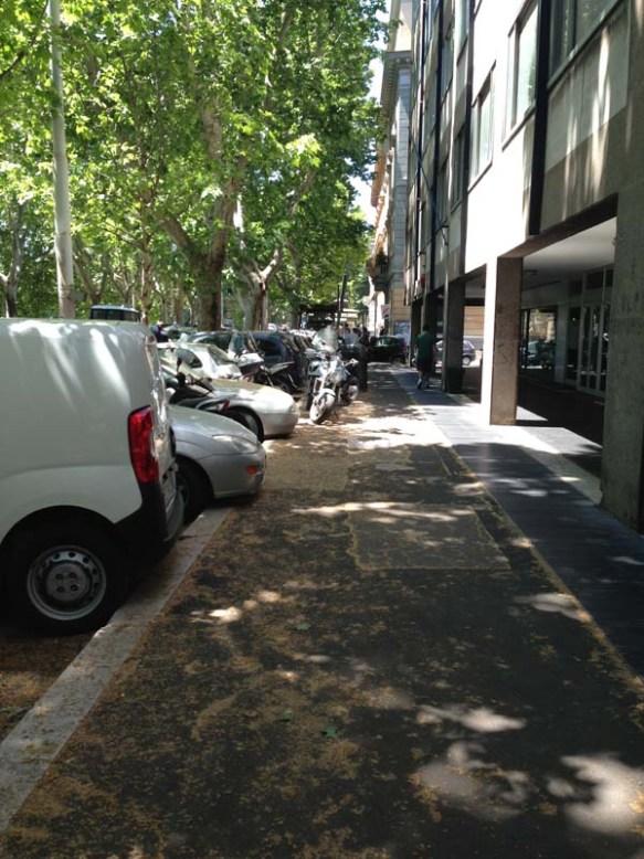 Street between the trees of Teastevere