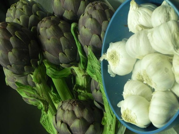 Making artichoke with garlic at cooking class chef andrea