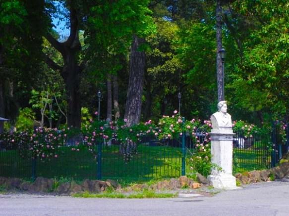 Pink roses at villa borghese gardens