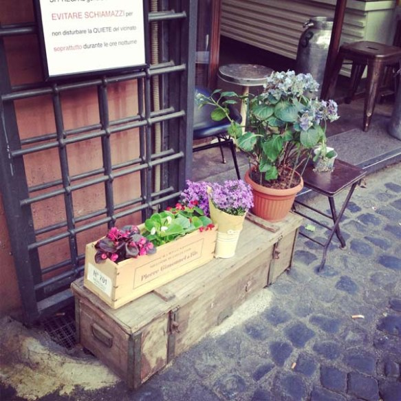 street entrance flower pots