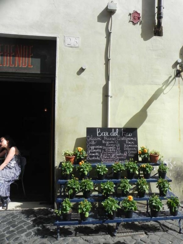 plants selling on the streets of bar del fico