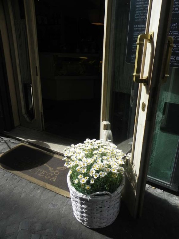 exterior of casa & bottega with white sunflower pot