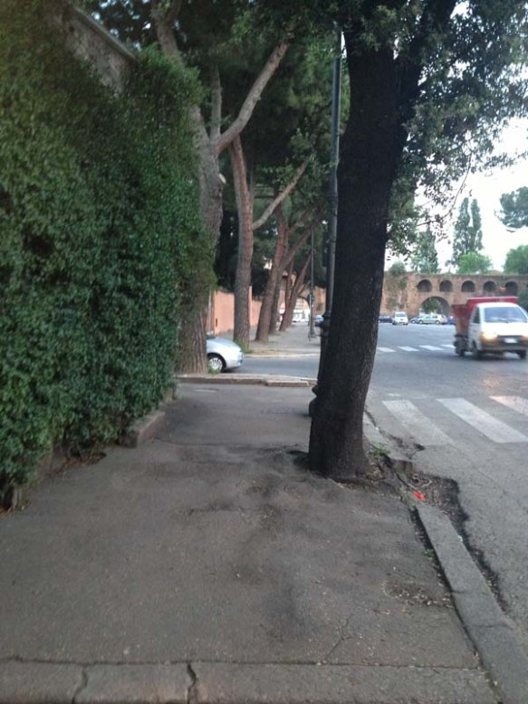 A street lane with green trees and grass at Testaccio Rome italy
