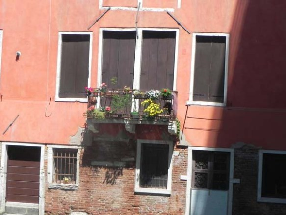 Architecture in venice is breathtaking specially with the beautiful cute little windows and decorations art is in everything yellow flowers