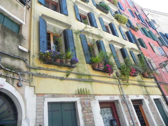 Architecture in venice is breathtaking specially with the beautiful cute little windows and decorations art is in everything tile windows and flower pots