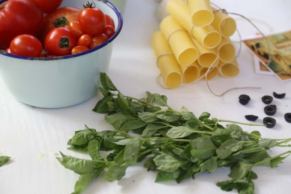 Cannelloni-Recipe-in-the-making-Tomato-Italian-Cooking-basil