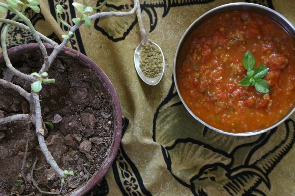 Alayet Bandoura Sauteed Tomatoes a Middle Eatern dish styled to perfection Foodart