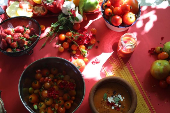 Reds introducing tomatoes as a fruit or vegetable as a flower food art and styling