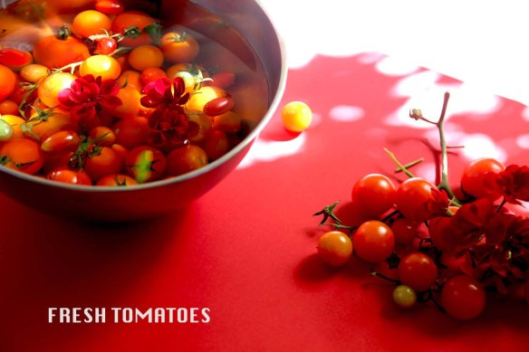 Tomato art styling and food styling with garlic and red flowers