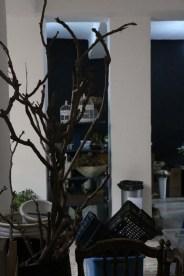 Shammas Shop