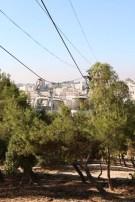 Amman Jordan Street photography