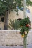 Webdeh Area Amman Jordan Urban