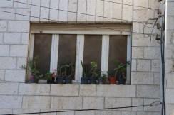 Street Photography Amman Jordan