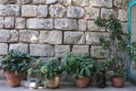 Amman Jordan Suburbs