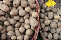 Kreuzberg Berlin Market and festival potatoes
