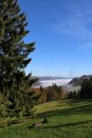 Tannenheim Oberbalmberg, Solothurn (Switzerland)