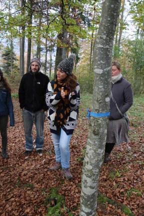 Camping team at Tannenheim Oberbalmberg, Solothurn (Switzerland)
