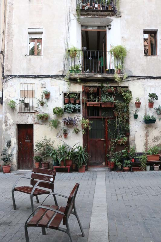 Open street garden in Barcelona