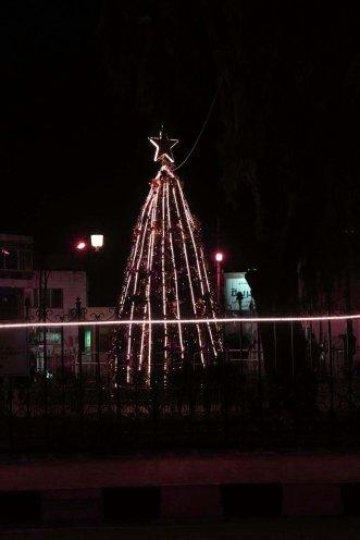 Christmas Tree and holiday in Amman Jordan beautiful in webdeh paris circle