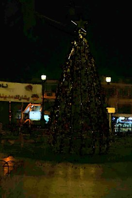 Christmas Tree and holiday in Amman Jordan beautiful in webdeh paris circle