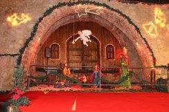 Christmas Tree and holiday in Amman Jordan beautiful in Fuheis near by amman in jordan christian church