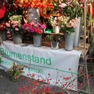 Florals Neukolln flea market in Berlin Maybachufer