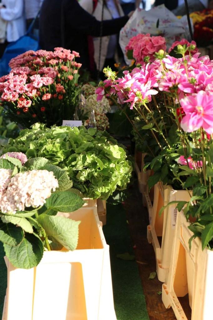 Flowers Neukolln flea market in Berlin Maybachufer