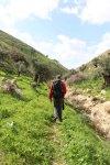 Wadi Yabis - Valley