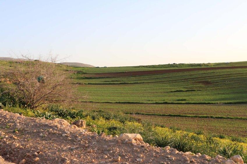 Hiking through Wadi Rayan Yabis between Ajloun and Jordan Valley