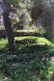Garden of Khalid shoman foundation