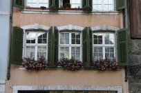 Beautiful green windows with pink roses