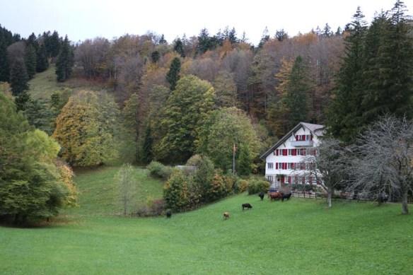 Switzerland Mountain and Greenery
