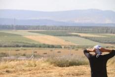 Palestinian Kuffieh