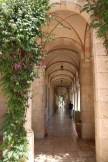 walking between the old city of Jerusalem ymca في القدس القديمة