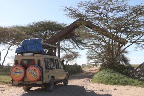 Serengeti, Safari, Jeep, Wild