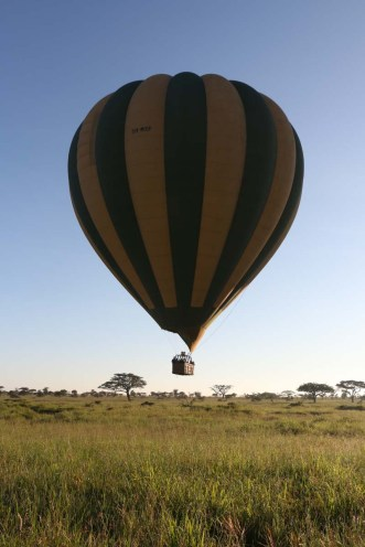 hot air balloon, safari, jungle, Serengeti, sunrise