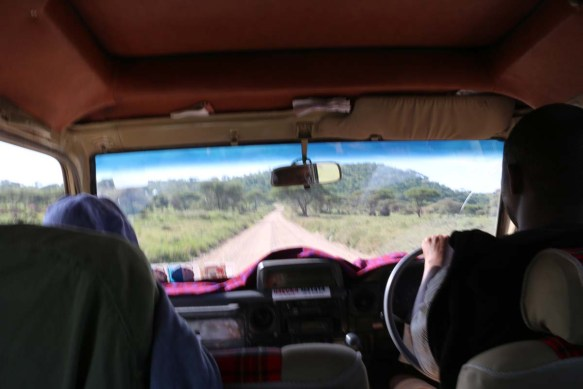 ride, jungle, tanzania, safari, Serengeti