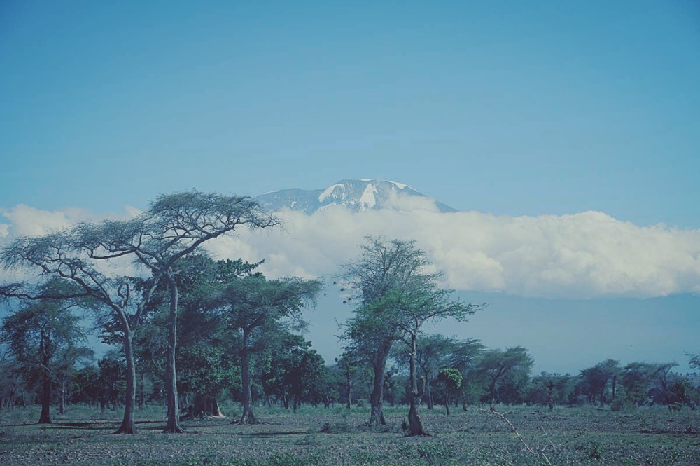 Quote, Kilimanjari, Mystic