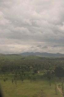 Arusha, greenery, Africa, Tanzania