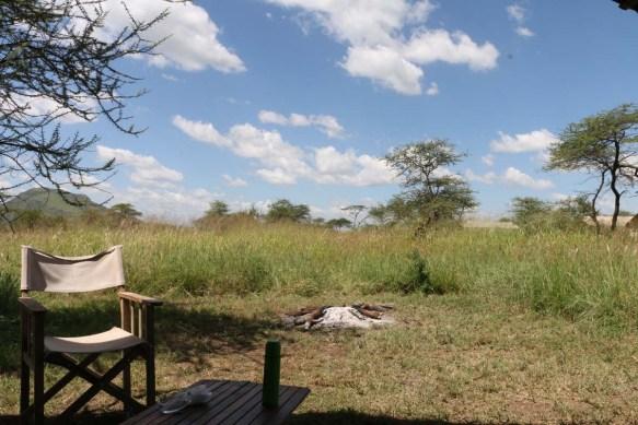 safari-tanzania-serengetti-safari-animal-jungle-113