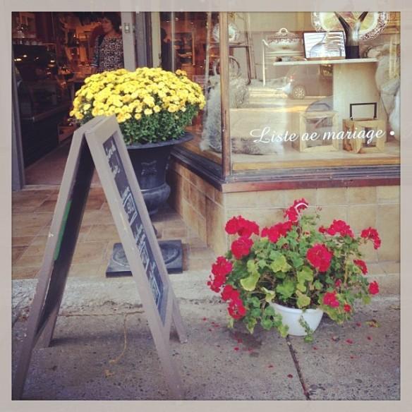 Flowers, Florals, Admire, Love